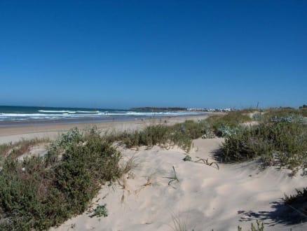 Strand mit Blick nach La Barrossa - Strand Novo Sancti Petri