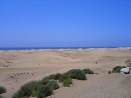 Dünen von Maspalomas - Dünen von Maspalomas