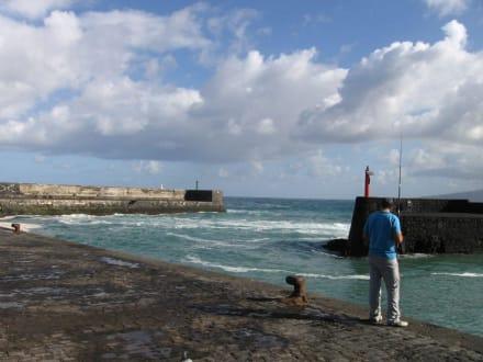 Der Hafen von Puerto de la Cruz - Fischereihafen Puerto de la Cruz
