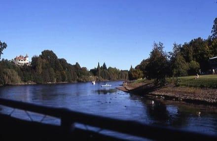 Blick vom Raddampfer - Waitomo River