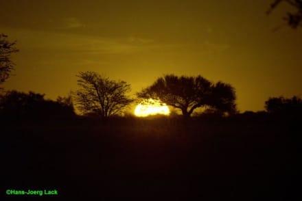 Sonnenuntergang - Tansania