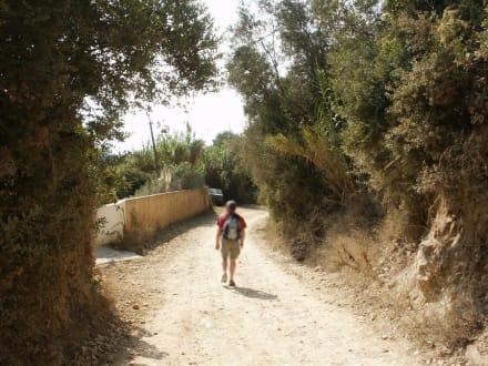 Auf dem Weg - Strand Mirtiotissa