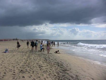 Wandern am Strand Kilometer weit Wunderschön - Dünen von Maspalomas