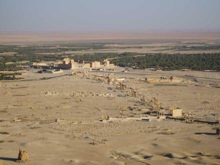 Ruinen - Ruine Palmyra
