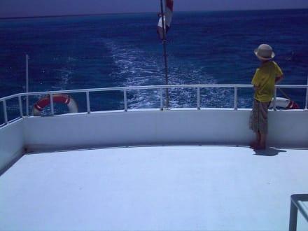 Deep Blue Divers  Barrakuda - nacktes Achterdeck - Schnorcheln Hurghada