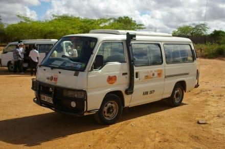 Car/Bus - LadyM Safari Tours