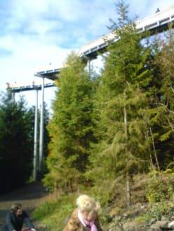 Baumwipfelpfad bei St. Engelmar - Waldwipfelweg St Englmar/Maibrunn