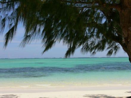 Sehnsucht - Playa Bávaro