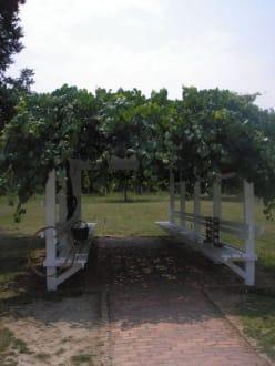 Schattenplatz auf der Farm - Slate Run Living Historical Farm