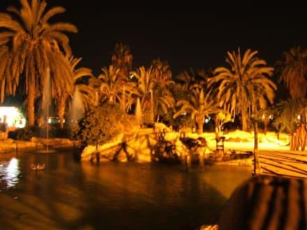 Park in Alanyas Hafengegend bei Nacht - Abdurrahman Alaettinoğlu Park / Park mit Wasserfontänen