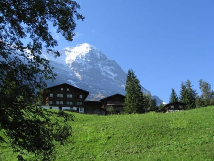 Eiger - Eiger Nordwand