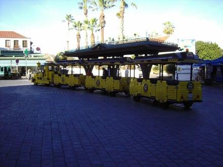 Die Bimmelbahn zum Park - Loro Parque