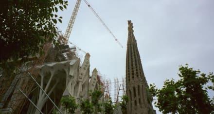 Barcelona - Sagrada Familia - Sagrada Familia