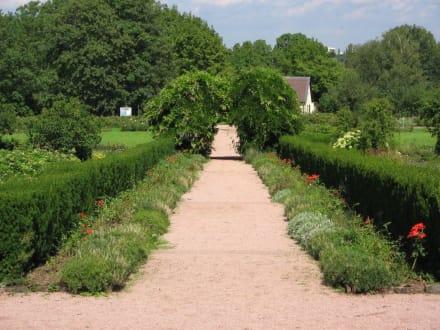 Park Rosenhöhe 3 - Rosenhöhe Park