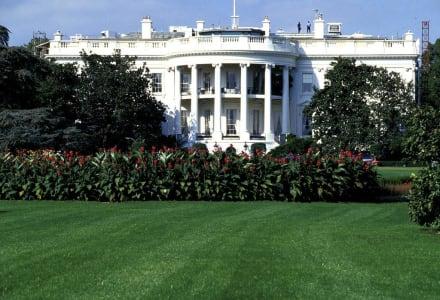 Weißes Haus - Weißes Haus / White House