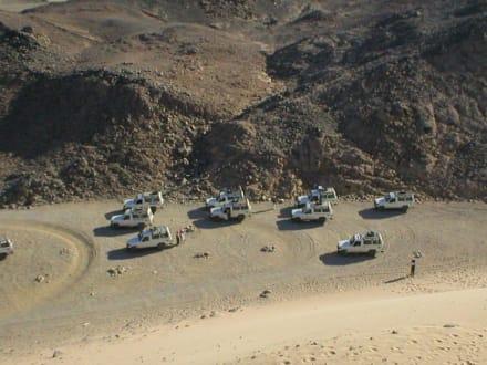 Jeepsafari - Jeep Safari Safaga