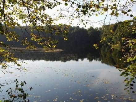 See - Birkhofsee