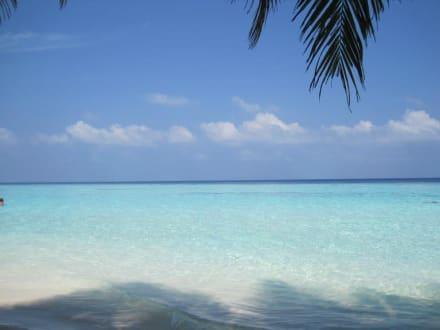 Einfach unglaublich schön biyadhoo island resort