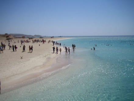 Giftun - Giftun / Mahmya Inseln