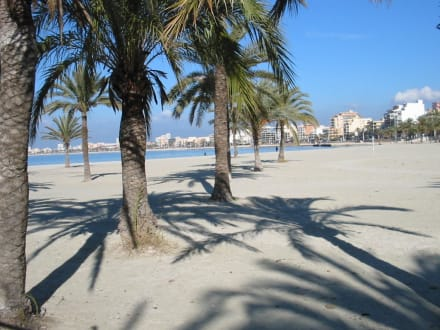 Strand von El Arenal im Januar - Strand El Arenal/S'Arenal