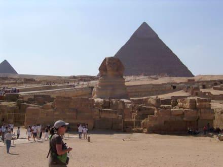 Sphinx und Pyramide - Pyramiden von Gizeh