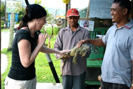 Reptiles - Eco Travel Guide