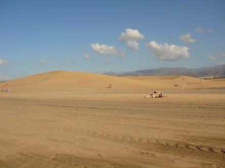 Dünenlandschaft - Strand Maspalomas