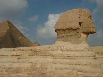 Sphinx bei den Pyramiden von Giseh - Pyramiden von Gizeh
