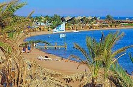 Der traumhafte Strand - Strand Dahab