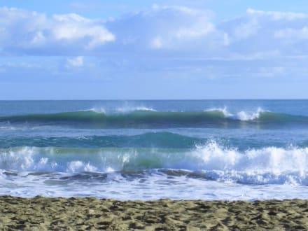 am Strand - Playa Cabarete