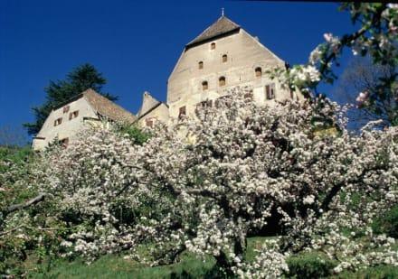 Schloss Englar - Pension Schloss Englar