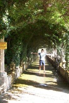 Jardin d´Alfabia - Gärten von Alfabia