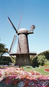 Windmühle - Golden Gate Park