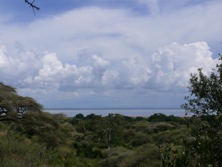 Ausblick auf den Lake Manyara - Lake Manyara Nationalpark