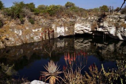 Süsswassersee - Otjikoto