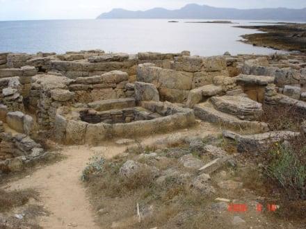 Gedenkstätte - Nekropolen Son Real und S'Illa d'en Porros