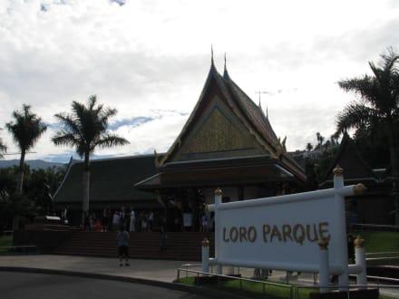 Eingang Loro Parque - Loro Parque