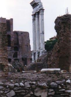 Forum Säule - Forum Romanum