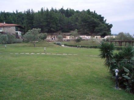 Landscape (other) -