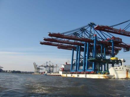 Schiff mit krasser Beladung - Hafenrundfahrt Hamburg