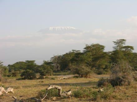 Super Landschaft - Kimana Reservat