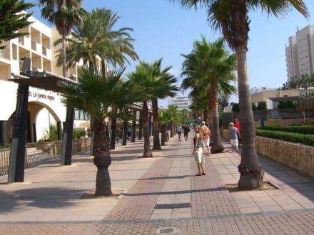 Zentrum - Fußgängerzone