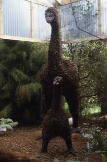 Die ausgestorbene Riesen-Moa - Agrodome