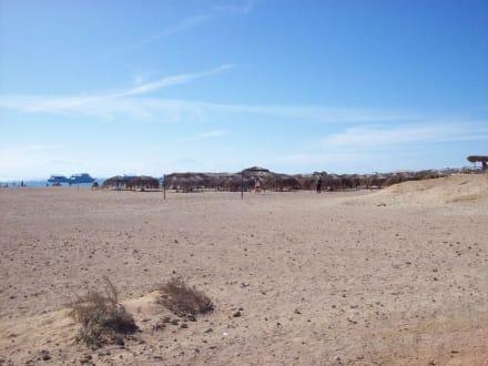 Die Insel - Marion & Mohamed (existiert nicht mehr)