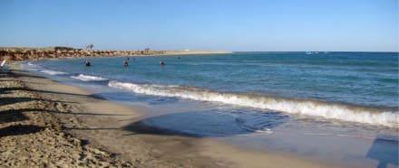 Abo Dabab-eine lebhafte Bucht - Bucht Abu Dabab