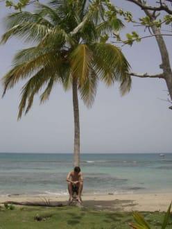 Playa Esmeralda - Ausflüge & Touren