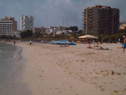 Der Strand von Palma Nova - Strand Palma Nova