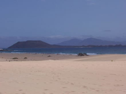 Der Strand von Corralejo - Strände Corralejo