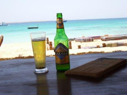 Erholung! - Tauchsafari King Snefro Spiri Hurghada