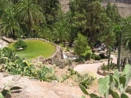 Palmitos Park - Gran Canaria - Maspalomas - Palmitos Park